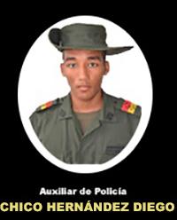 AR. Chico Hernández Diego Luis