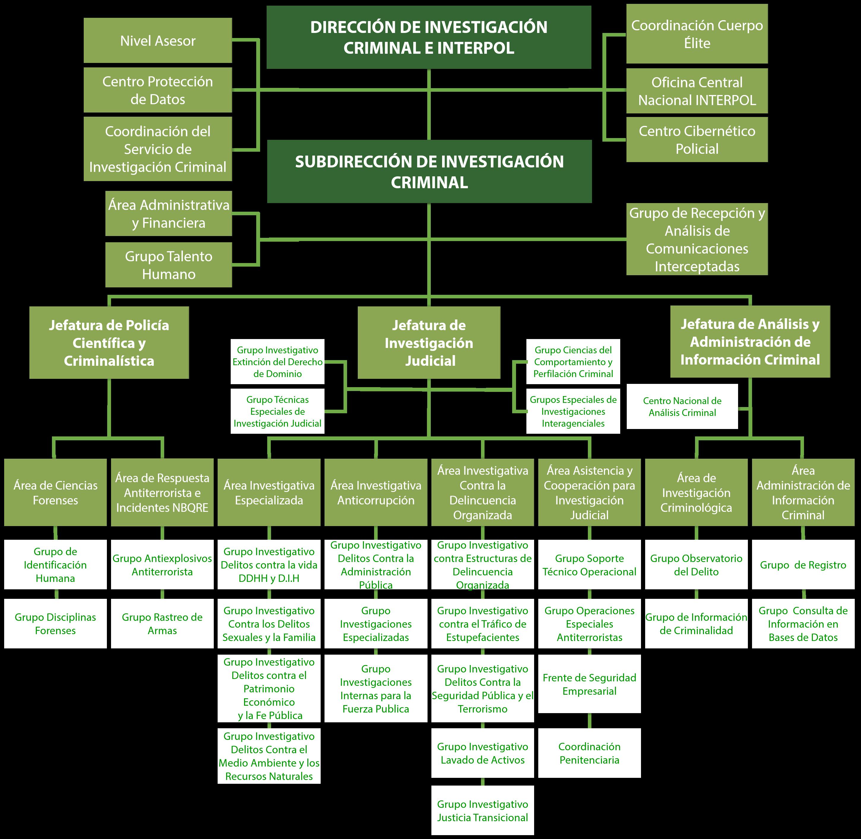 Organigrama Dirección de Investigación Criminal e INTERPOL