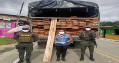 Continuamos los controles para frenar la tala de árboles y el tráfico ilegal de madera