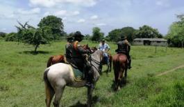 Con campañas puerta a puerta buscamos evitar el robo de ganado en Bolívar