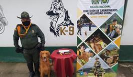 Policía Nacional halla estupefaciente en la bodega de una empresa de encomiendas