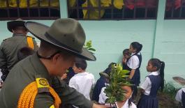 Reforestación entornos escolar