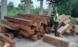 Continúan-los-fuertes-controles-al-transporte-de-madera-ilegal-en-el-Cesar