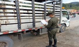 El Departamento de Policía Santander trabaja del lado del campo