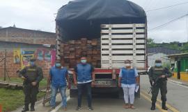 No paran los operativos para frenar la tala de árboles y el tráfico ilegal de madera