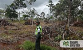 Todos-contra-la-deforestación-en-el-Meta1