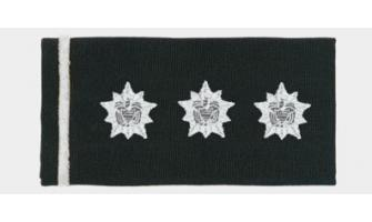 Teniente General