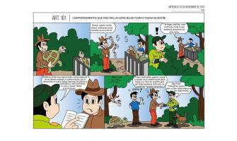 Comportamientos que afectan las especies de flora o fauna silvestre