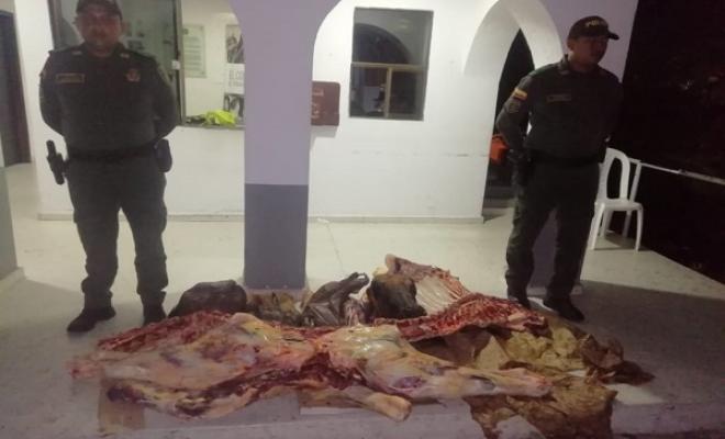Policía incauta carne producto de abigeato